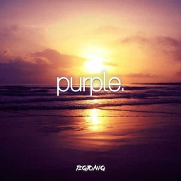 Cover of track Purple by BLIND FLUX