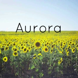 Cover of track Aurora by DubLion