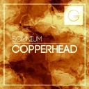 Cover of track Copperhead by Somnium [Wise Ed]