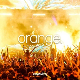 Cover of track Orange [Remix] by Nerol