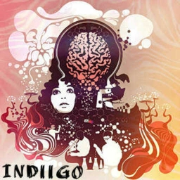 Cover of track NN by indiigosteam