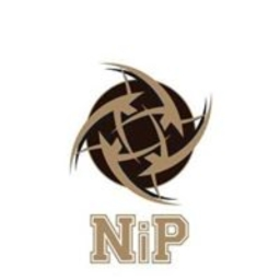 Nip steam сайт для cs go магазин