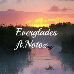 Cover of track Everglades (Ft. Notoz) by DubLion