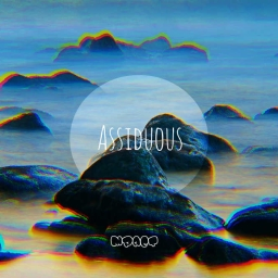 Cover of track Assiduous by koru