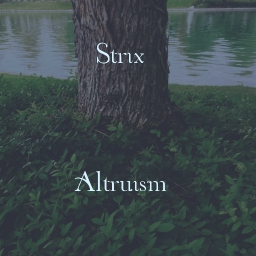 Cover of track Wii Remote by Strix