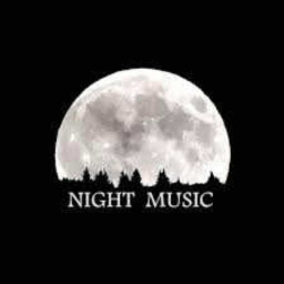 Cover of track Night Music (dnb-mix) by Skankline