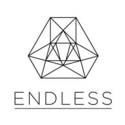 Cover of track endless by [H]oosey