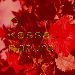 Cover of track nature by Kassa