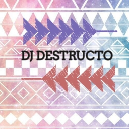 Avatar of user DJ Destructo