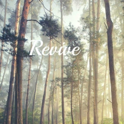 Cover of track Revive by DubLion