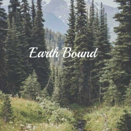 Cover of track EarthBound by DubLion