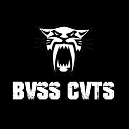 Cover of track Dark Streetz (Dark Guitar Beat) by BV$$ CVT$