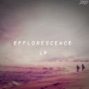 Cover of album Efflorescence LP by Zerod