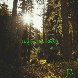 Cover of track Deep in the Woods by FollsUnitex