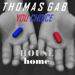 Cover of track Your choice by ThomasGab