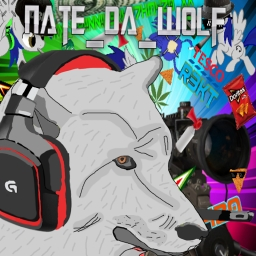 Avatar of user nate_da_wolf