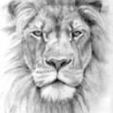 Avatar of user @LIONS PRODUCTION*