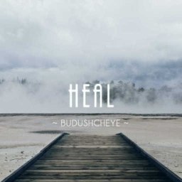 Cover of track Heal by Budushcheye
