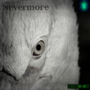 Cover of album Nevermore by Reboot