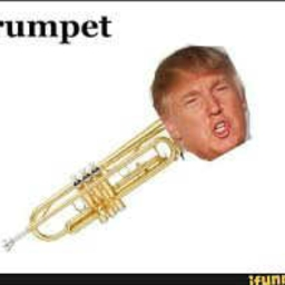 Cover of track Trump is a Trumpet (50 follows) by cancer