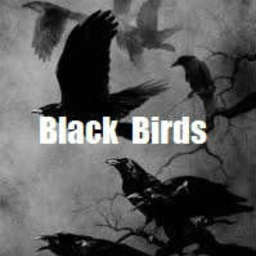 Cover of track Black Birds by NAM'S