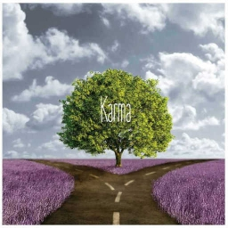 Cover of track Karma by Kyba