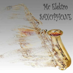 Cover of track Mc Elektro-Saxophone by Mc_Elektro