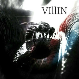 Cover of track Villin by VIllIN
