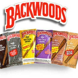 Cover of track BACKSEAT BACKWOODS by dopesoe