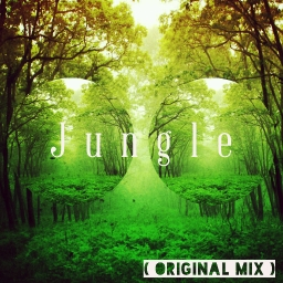 Cover of track Jungle( Original Mix ) by The Phoenix