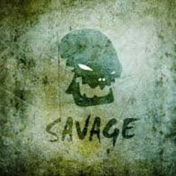 Cover of track Savage by TJ Styles