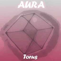 Cover of track Torus by Limauru