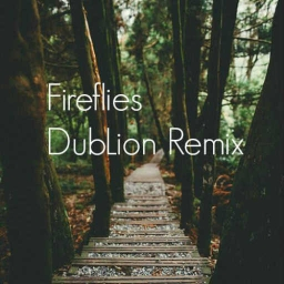 Cover of track Fireflies (DubLion ft Alpha Wolf) by Hairy Pawter