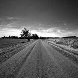 Cover of track Lonely Path by Adrian_von_Foot