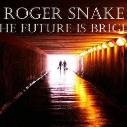 Cover of track The future is bright by RogerSnake