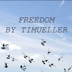 Cover of track Freedom by TIMUELLER