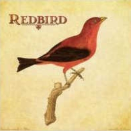 Cover of track RedBird by Carlos Hedfords