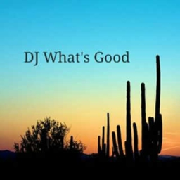 Cover of track DJWhatsGood- Desert night by DJ Whats good