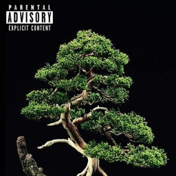 Cover of track Trap Of Nature by DINero