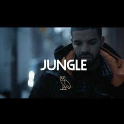 Cover of track Jungle x Drake (Instrumental Remix) (Prod. By Jay The Leo) by jaytheleo