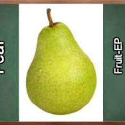 Cover of track Pear by Floppy
