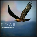 Cover of track Soar ft. Tim Derry by ded