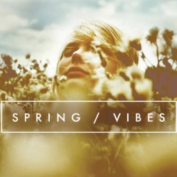 Cover of track Spring Vibes by wavesbykeith