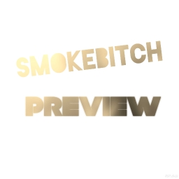 Cover of track PREVIEW by SMOKEBITCH
