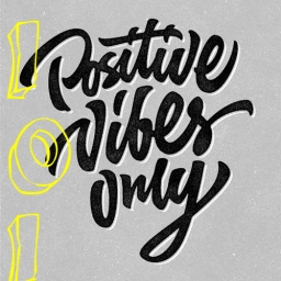 Cover of track positive vibes by 101